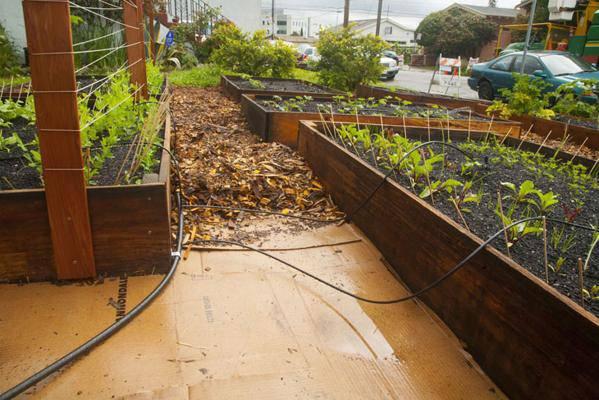 Permaculture il a commenc avec quelques caisses for Rendement permaculture