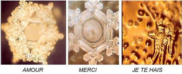 La Puissance des Mantras démontré scientifiquement 561c78e9778fc48d9918e13bd9d2d05a-l
