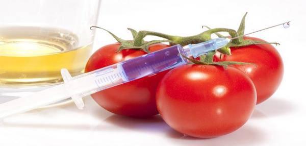 géant des OGM