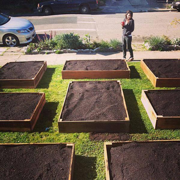 Permaculture il a commenc avec quelques caisses for Permaculture rendement