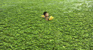 pollution de la chine