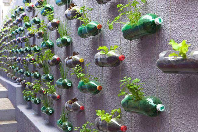 jeter les bouteilles en plastique