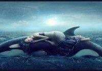 Des rêves lucides