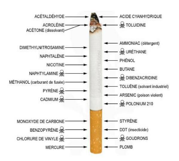 destroying your health by smoking cigarettes essay We will write a cheap essay sample on should cigarettes smoking be smoke and destroying their health smoking cigarettes is good for your health.