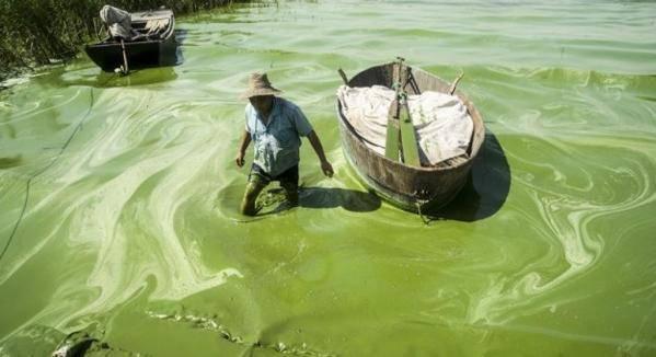 pollution chine