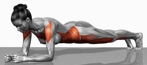 kilos- superflus-muscle_planche-abdominale
