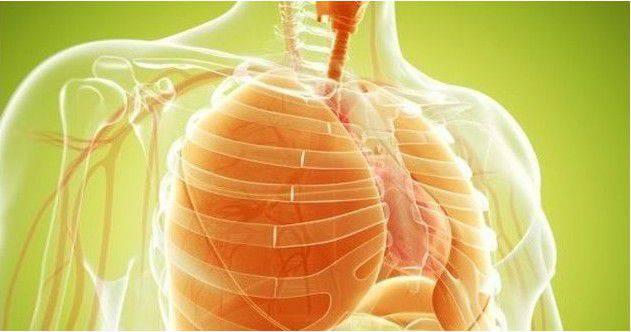 nettoyer vos poumons