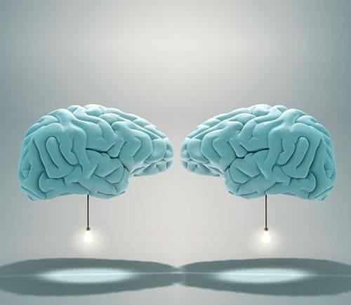 deux- cerveaux (1)
