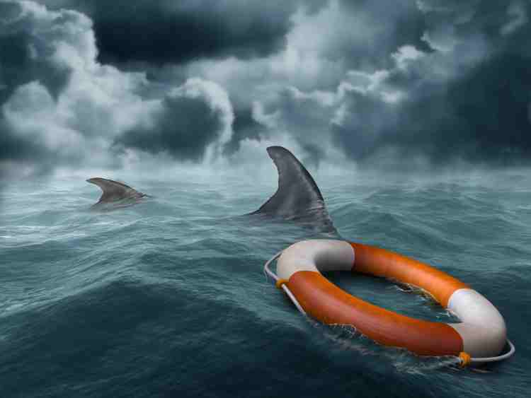 Illustration of a lifebuoy adrift in the ocean surrounded by hungry sharks