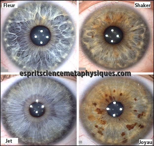 structure-de-votre -iris (3)