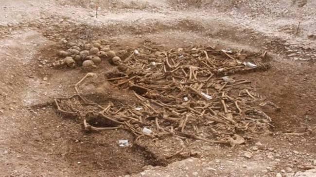 3. Vikings Headless.