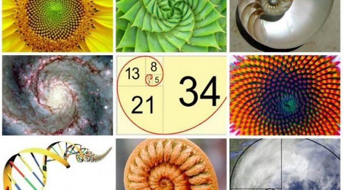 La-magie-de-Fibonacci (2)