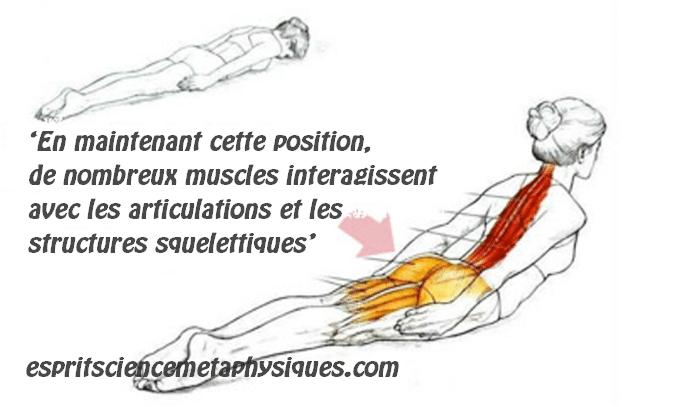 posture-corporelle
