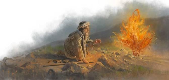Moïse-de-la-Bible-était-sous-DMT