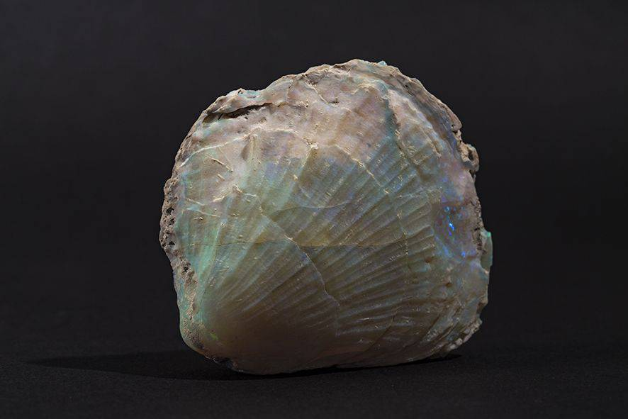 pierre-précieuse-6