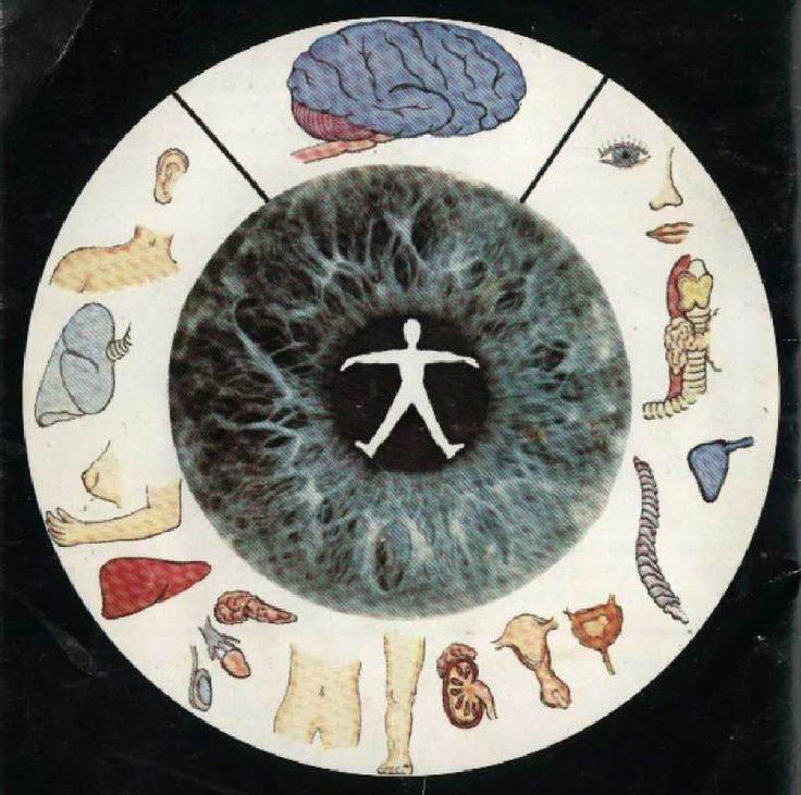 yeux iris