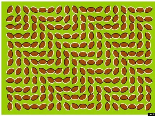 Stare at this picture and it moves. Its actually a static image.