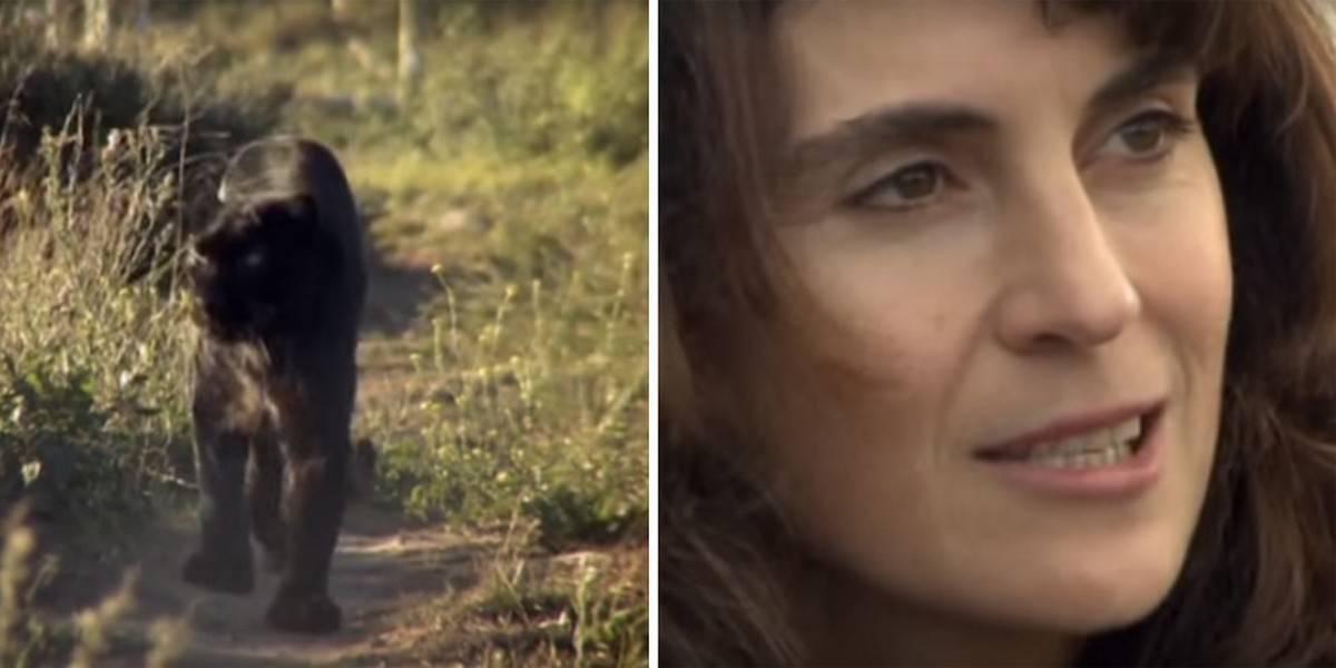 Ces personnes incroyables prouvent qu'il est possible d'écouter les pensées d'un animal Anna Breytenbach a passé sa vie à communiquer avec les animaux. Une vidéo du travail d'Anna avec une panthère noire nommée Diablo, est récemment devenue virale.