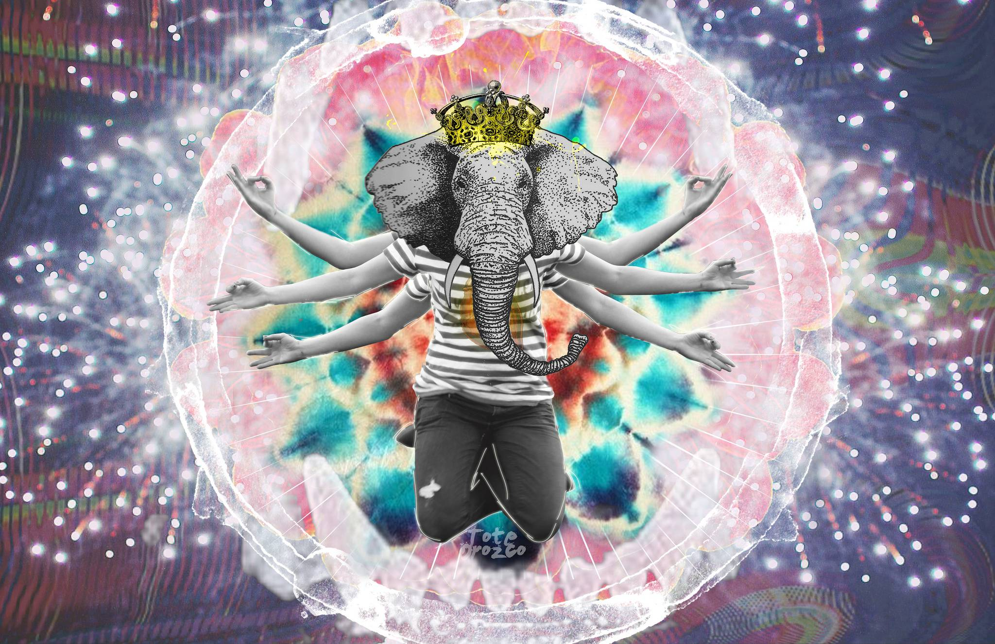 Vivre en harmonie avec l'ego
