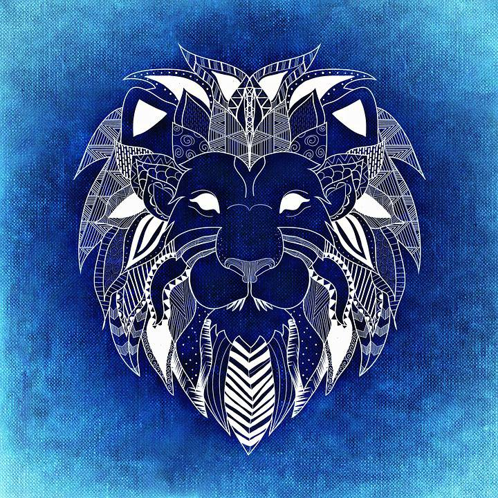 7 choses que vous devez savoir lorsque vous aimez un lion