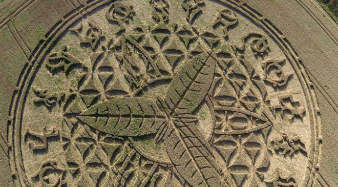 Le 12 août dernier, à Ansty, une petite ville près de Salisbury, dans le Wiltshire en Angleterre, un incroyable crop circle a fait son apparition.