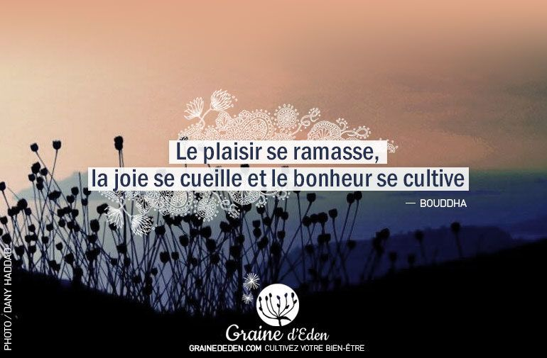citation-7-new