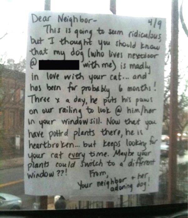 Le propriétaire du chien ne pouvait pas nu pour voir le chiot si triste, si une note manuscrite a été enregistrée à la fenêtre du chat propriétaire, expliquant la situation à portée de main ...