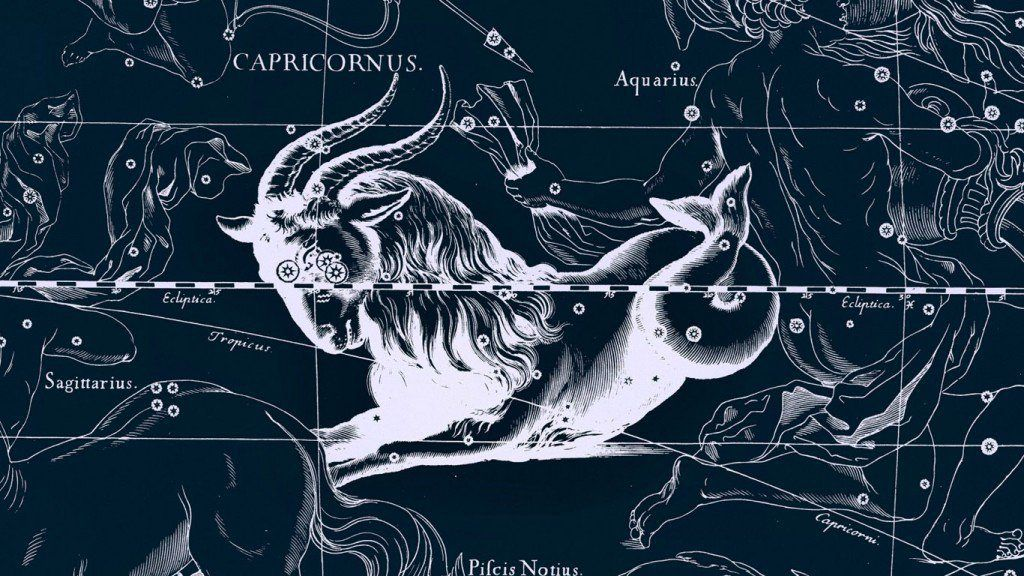 Capricornes