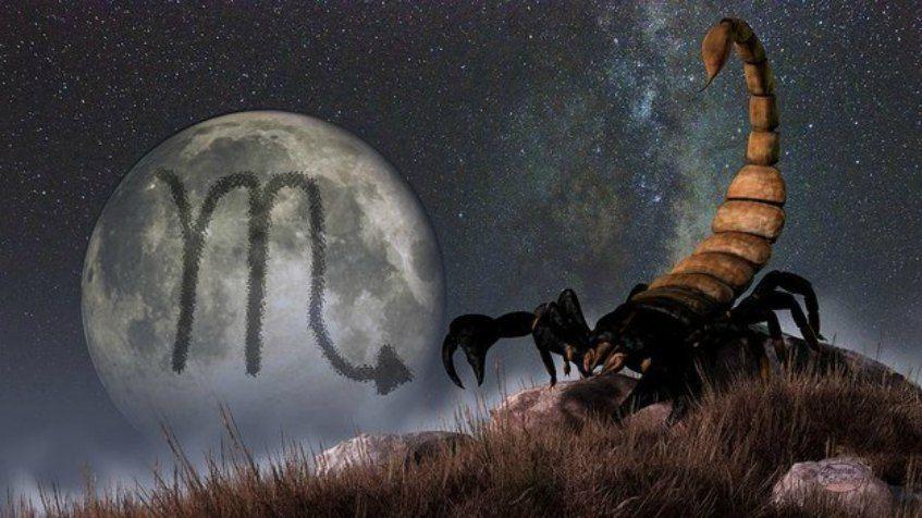 Scorpion aimer
