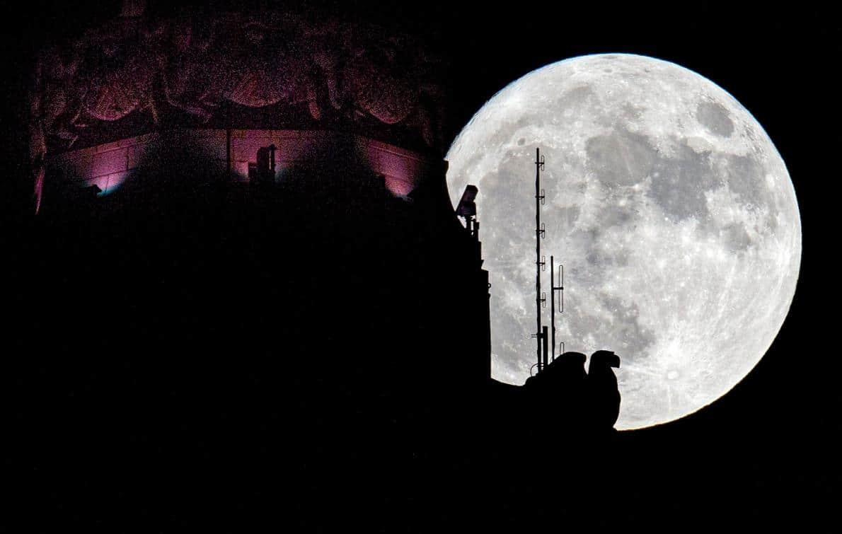 Le 13 et 14 Novembre, le monde a été gâté par la Super Lune la plus brillante en 68 ans. Et les images de cette selection sont tout simplement superbes
