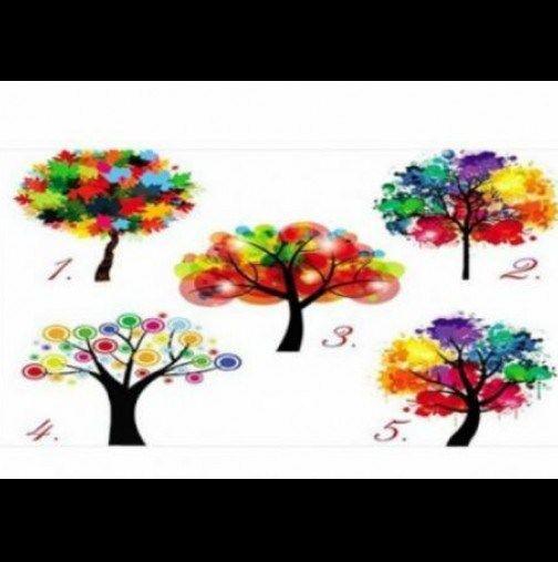 arbre de votre Âme