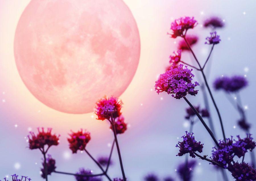 Pleine Lune du 5 Octobre 2017