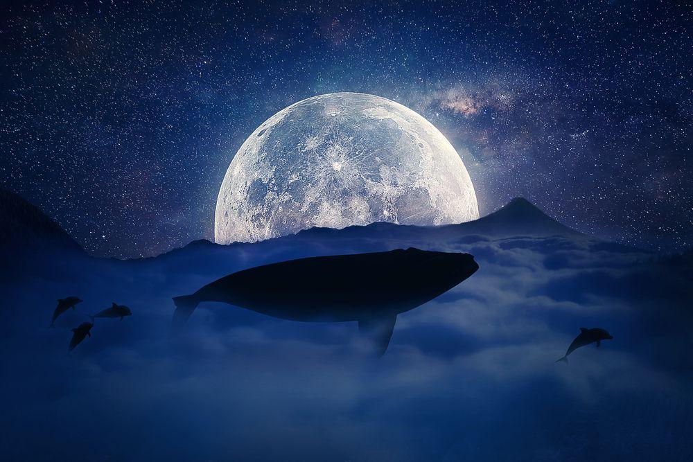 Pleine lune du 6 septembre 2017