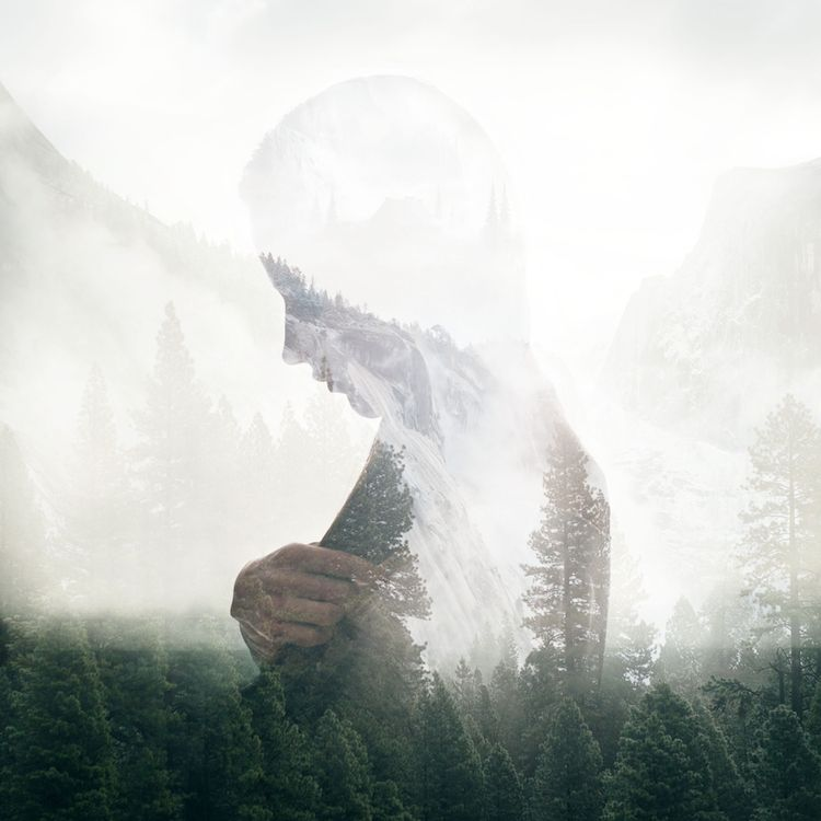avantages spirituels et mentaux des forêts