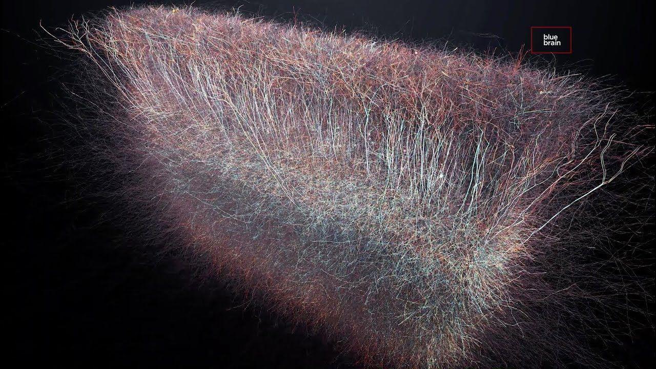 univers multidimensionnel dans notre cerveau