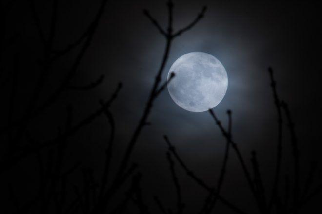 éclipse lunaire totale du 31 janvier
