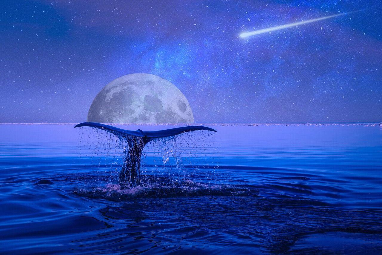 """Résultat de recherche d'images pour """"photo pleine lune gratuit"""""""
