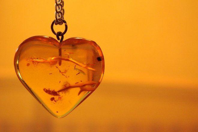 propriétés de l'ambre