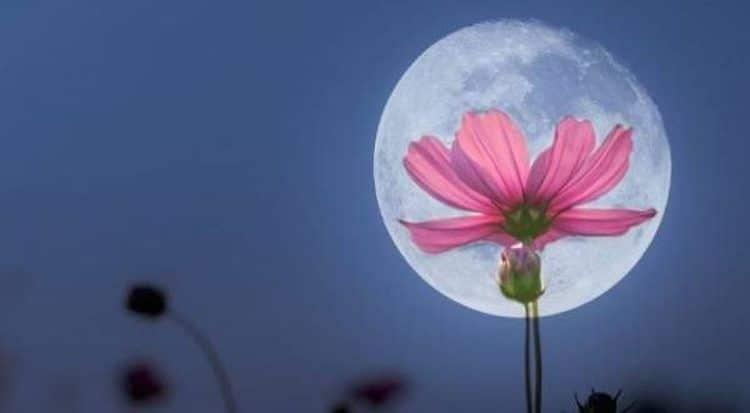 astrologie la pleine lune du 30 avril 2018 la r ussite finale. Black Bedroom Furniture Sets. Home Design Ideas