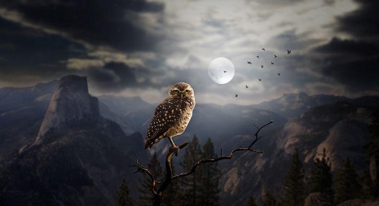 La Pleine Lune du 29 Mai 2018