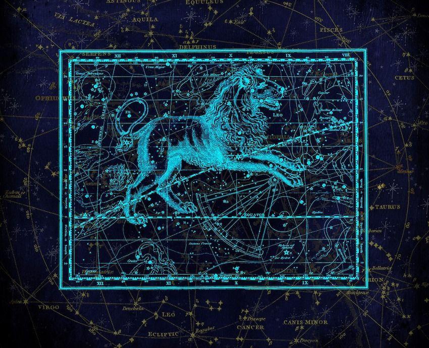 astrologie 14 raisons pour lesquelles le lion est l 39 un des meilleurs signes du zodiaque. Black Bedroom Furniture Sets. Home Design Ideas
