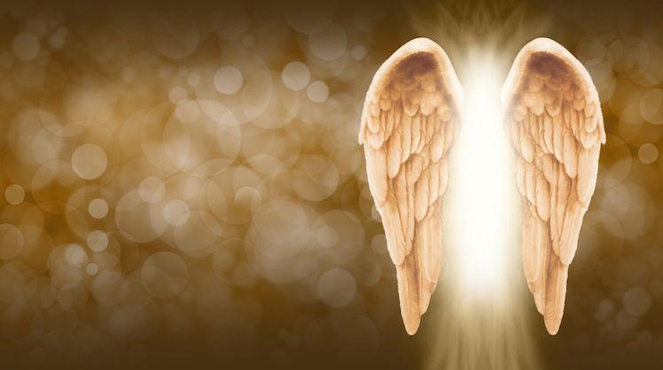 anges incarnés