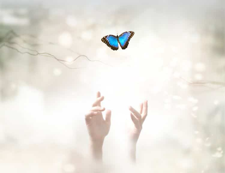 anges avertir danger