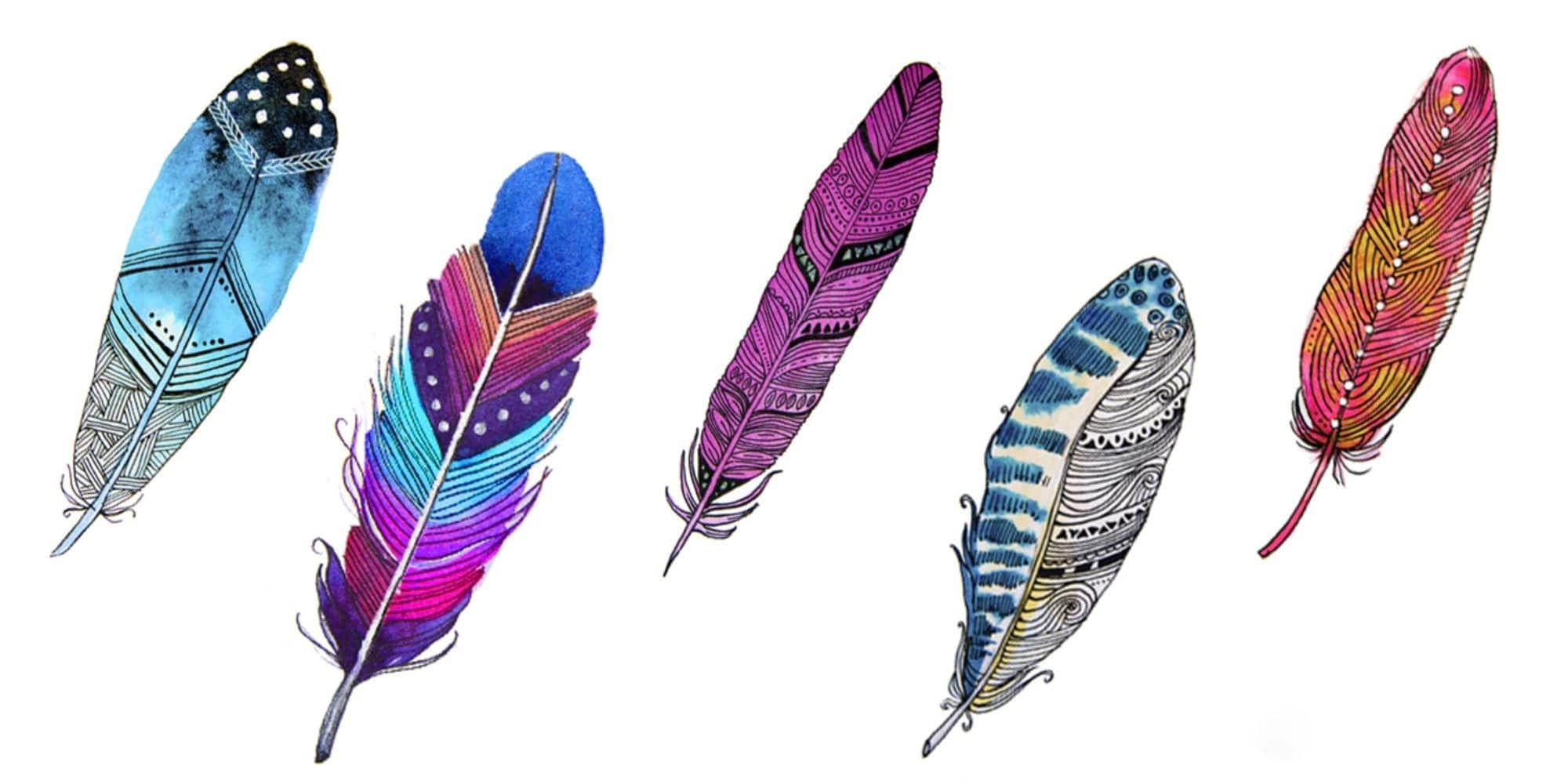 Test des plumes