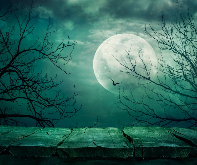 pleine lune du 26 août en Poissons