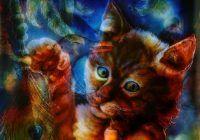 connexion spirituelle avec votre chat