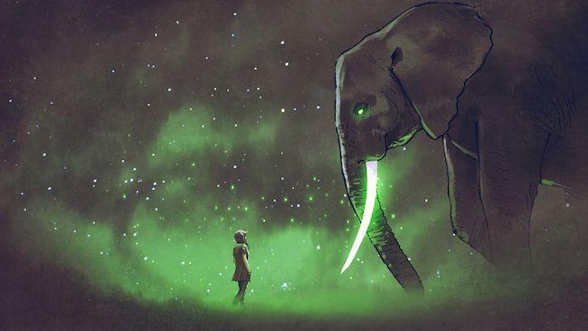 éléphant et la corde