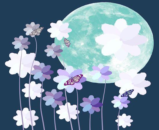 Pleine lune des fleurs du 18 mai