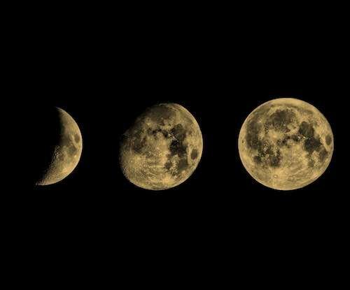 Phases de Lune pour 2020