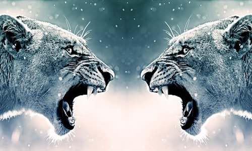 gérez la colère
